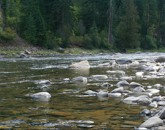 Lochsa river idaho for Brownlee reservoir fishing report