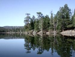 Angler Guide | Arizona Fishing Report: Greer Lakes