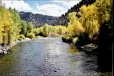 Almont Colorado Bait Fly Amp Tackle Shops