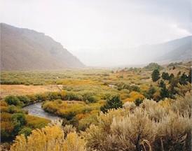 Fishing Colorado S Culebra Creek