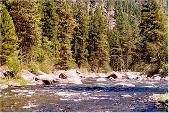 Montana S Rock Creek Montana Fishing