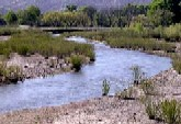 Gila river new mexico campgrounds for Conchas lake fishing report