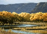San juan river new mexico rv parks rv rentals for Conchas lake fishing report