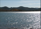 Bill evans lake new mexico campgrounds for Ute lake fishing report