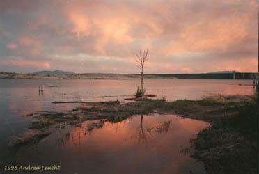 Cochiti lake new mexico for Santa fe dam fishing