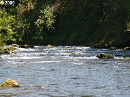 Mountain fishing lakefront properties for sale for Washougal river fishing